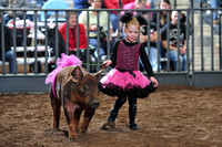 Levelland Chapter Stock Show 1-17-2012
